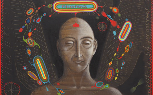 Entre o espiritual e o sexual: sobre alguns desenhos de Alex Cerveny