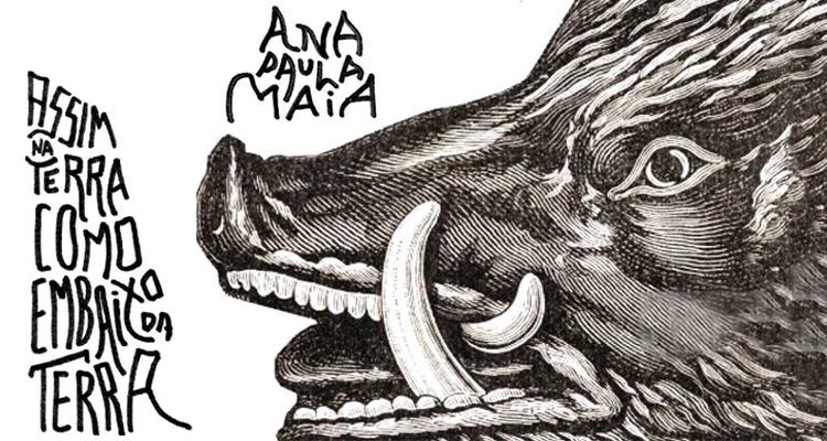 Sobre o novo romance de Ana Paula Maia