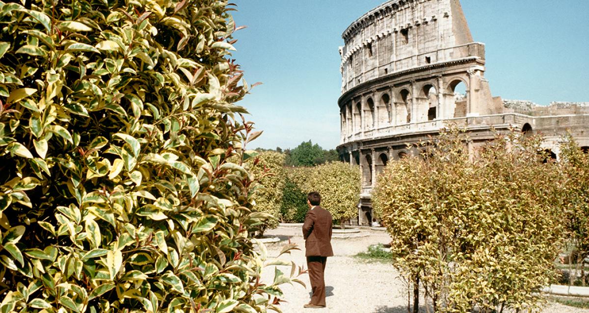 Lidas em diálogo, obras de Ferrante e Starnone garantem terceira experiência ao leitor
