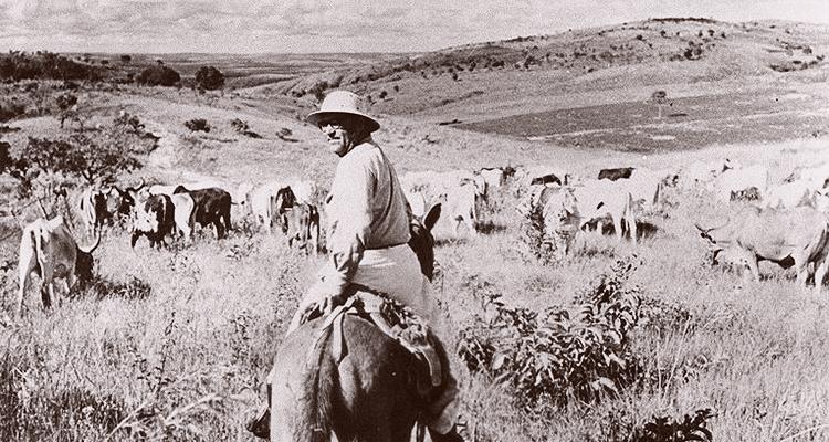 Guimarães Rosa em uma de suas viagens ao sertão de Minas Gerais, 1952 (Foto Eugênio Silva)