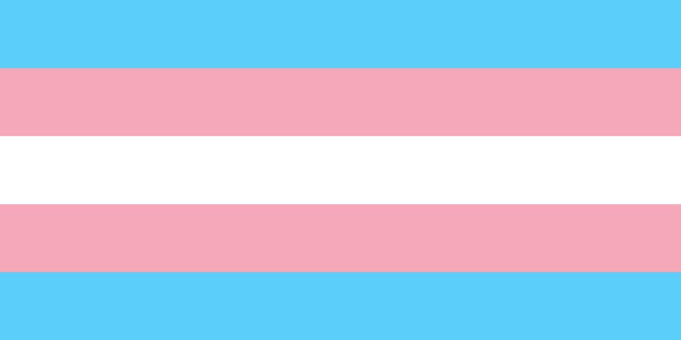 Verônica Bolina e o transfeminicídio no Brasil