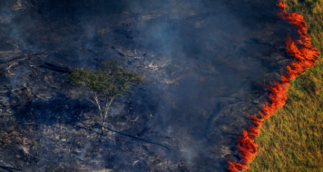 fogo na amazonia Bruno Kelly-Reuters