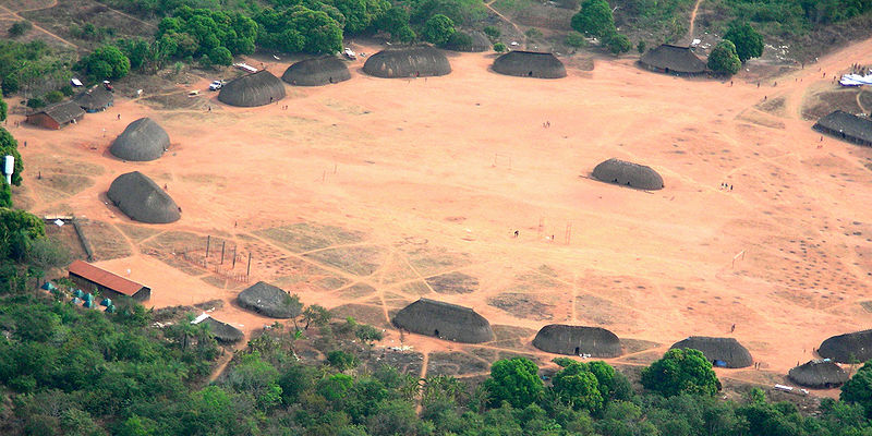 A cavalaria bolsonarista, a questão indígena e o meio-ambiente