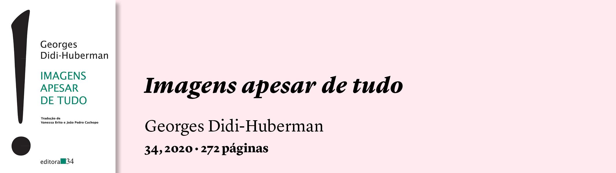 Imagens apesar de tudo, Didi-Huberman